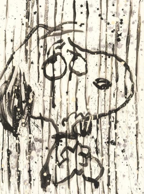 Tom Everhart - Dancing In the Rain