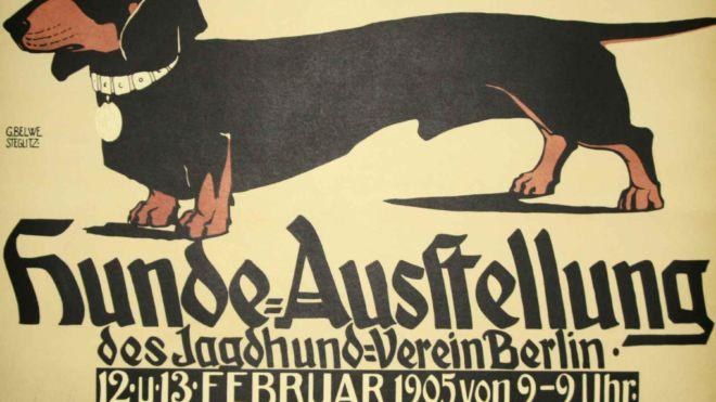 Hunde Ausstellung - Dachshund